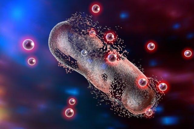 微生物,抗生物質