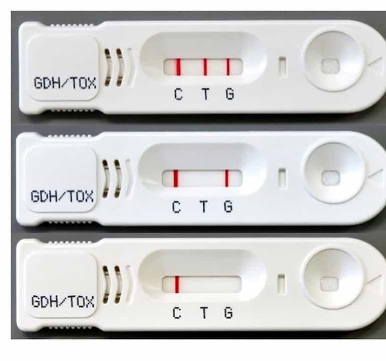 CD抗原(グルタミン酸デヒドロゲナーゼ)とCD毒素(トキシン)を同時に検出するキット